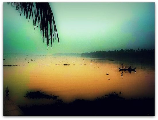 The World Backwaters : Fishermen pulling up their nets...early morning