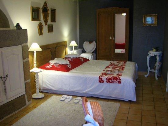 L'Angeviniere - Gites et Chambres D'Hotes : Chambre d'hôtes