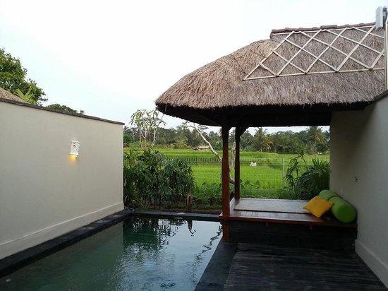 Alam Puisi Villa: Villa pool :)