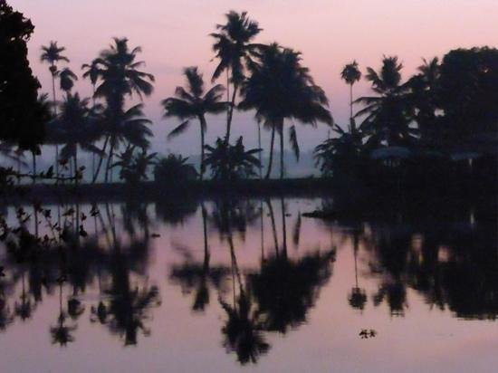 Our Land Island Backwater Resort: sunrise