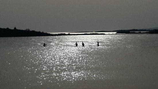 Nissi Beach Resort : sunset swimming in February