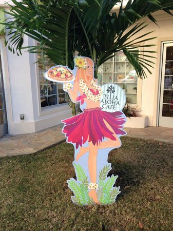 Tilia Exquisite Aloha