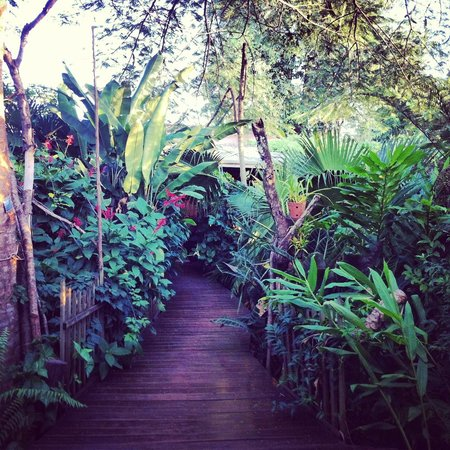 Secret Garden Iguazu B&B: The Garden