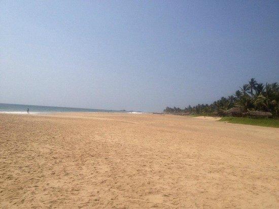Hotel Ocean View Cottage: Пляж
