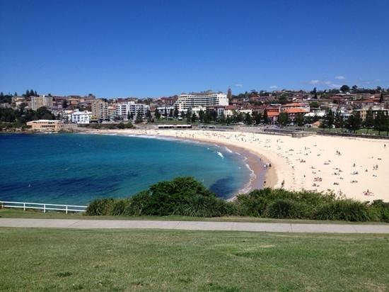 Adina Apartment Hotel Coogee: Coogee beach
