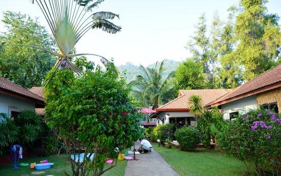 Seaview Paradise Resort Hotel: Территория
