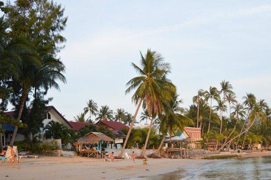 Seaview Paradise Resort Hotel: Территория рядом с отелем