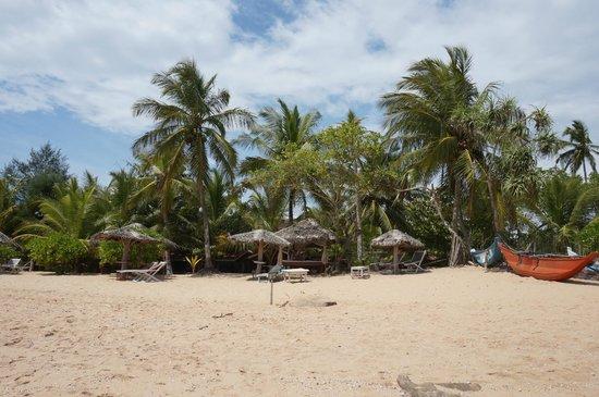 Ibis Guesthouse: Vue depuis plage