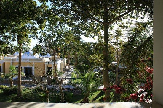 Lilly Land Beach Club Hotel : Вид из номера