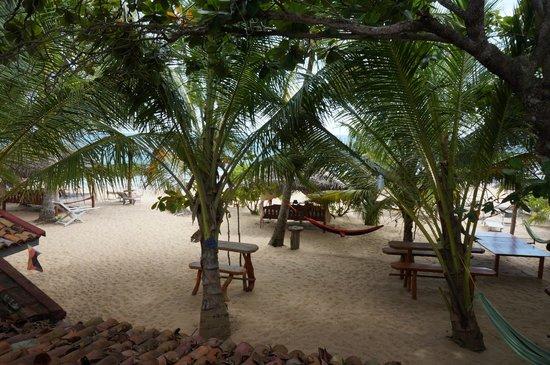 Ibis Guesthouse: Vue depuis terrasse