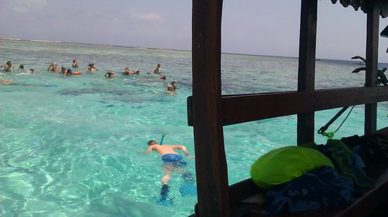 Zanzibar Star Resort: Day trip snorkelling at mnemba island