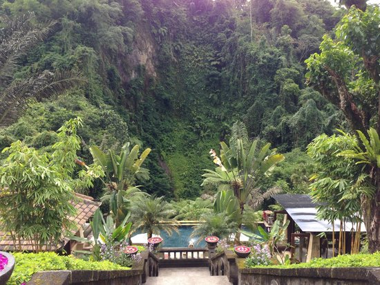 Bagus Jati Health & Wellbeing Retreat: Pool and Spa