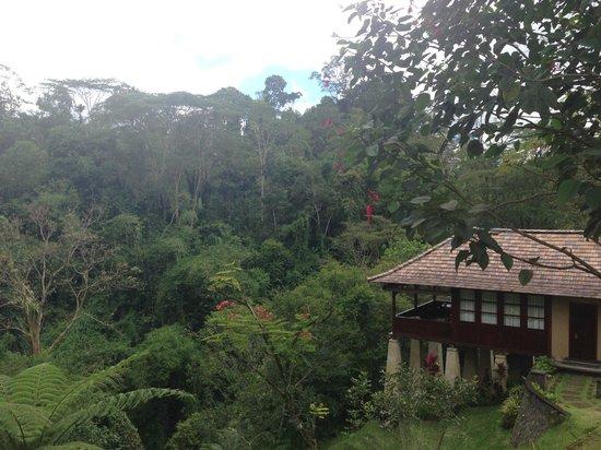 Bagus Jati Health & Wellbeing Retreat: Villa