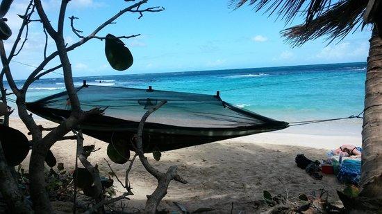 Playa Flamenco: my Byer Mosquito Hammock set up right on the beach where I slept