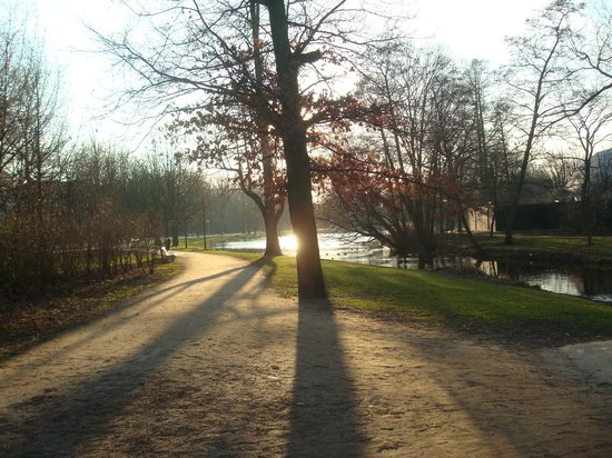 Vondelpark: Pictures from around the park