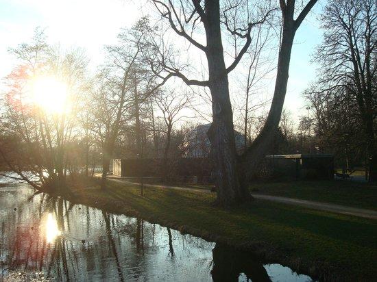Vondelpark : Pictures from around the park