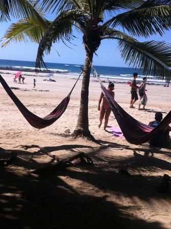 Playa Avellana: playa Avellanes, Costa Rica