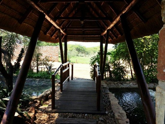 Kwamahla Conference Centre & Game Lodge: Puente 2
