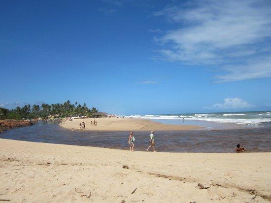 Jasmim dos Poetas: Rio e Mar