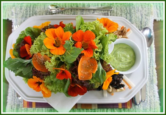 Eve's Garden: The salad that puts other salads to shame