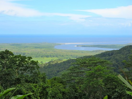 Cape Trib Connections - Day Tours: One of the Lookout points... The Daintree River Meets the Ocean