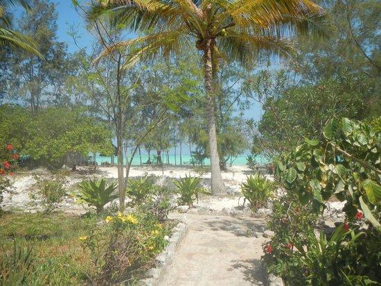 Ndame Beach Lodge Zanzibar: Blick zum Strand