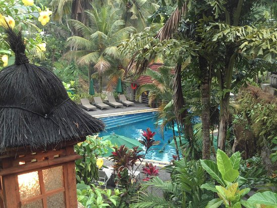 Bali Spirit Hotel and Spa : paradise