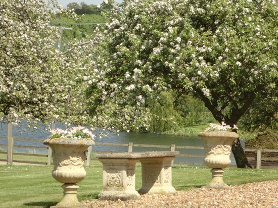 Newton Park Farm Bed and Breakfast: The Orchard