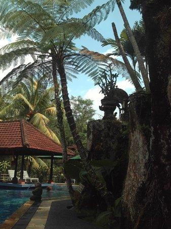 Bali Spirit Hotel and Spa : the bar