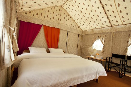 Camp Nirvana Yamunotri: Room