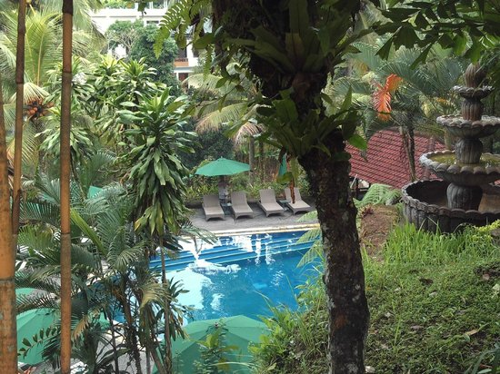 Bali Spirit Hotel and Spa: pool veiw from giftshop