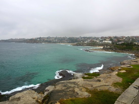 Bondi to Coogee Beach Coastal Walk: Not the best weather but still a great view