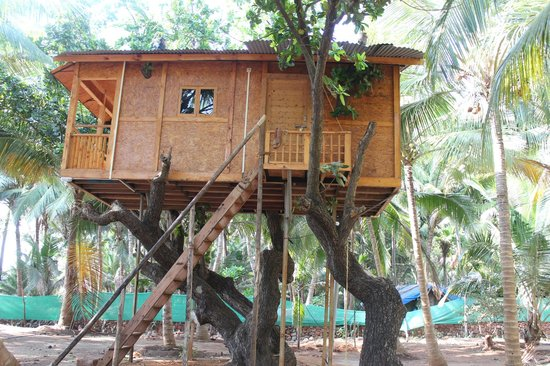 Oceano Pearl : Tree Room