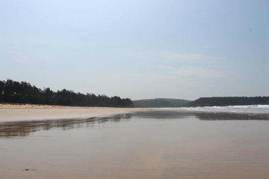 Oceano Pearl : Beach