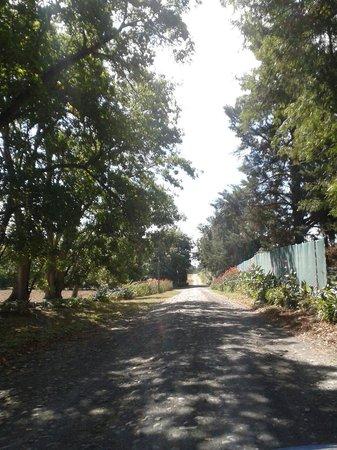 Casa Mia Health Spa and Guesthouse: Fahrt zum Eingang