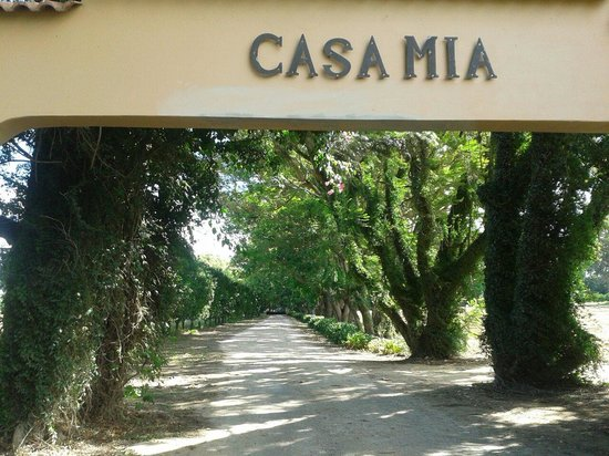Casa Mia Health Spa and Guesthouse: Eingang