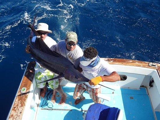 Papagayo Fishing Charters: Sailfish