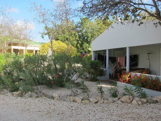 Caribbean Club Bonaire: garden in front of the room