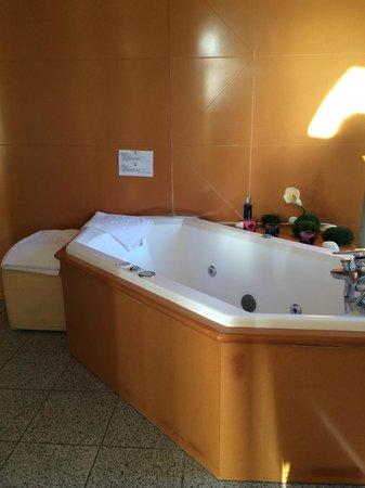 Les Loges du Parc & Spa : La baignoire dans la chambre