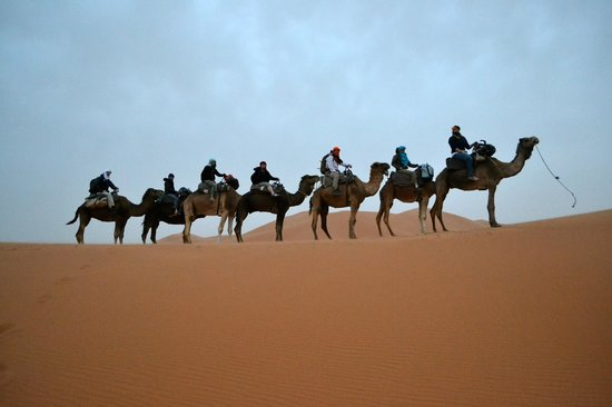 Riad Mur Akush : Camel Trek- arranged by the hotel