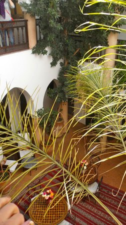 Riad Mur Akush : Courtyard