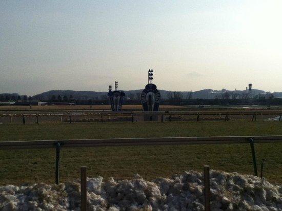 Tokyo Horse Racetrack : まだ雪が残ってました。