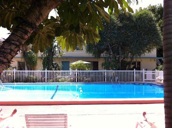 Sea Cove Motel: Sea Cove Pool