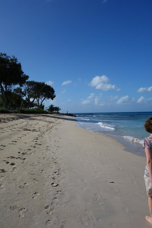 Discovery Bay by Rex Resorts: On the beach