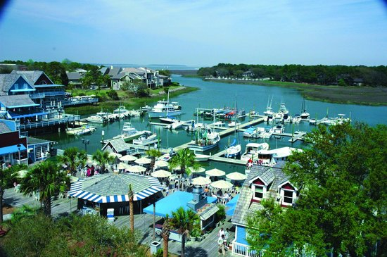 Picture Of Salty Dog Cafe