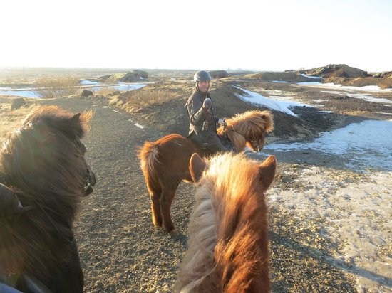 Islenski Hesturinn, The Icelandic Horse - Riding Tours: stopping to learn about our surroundings