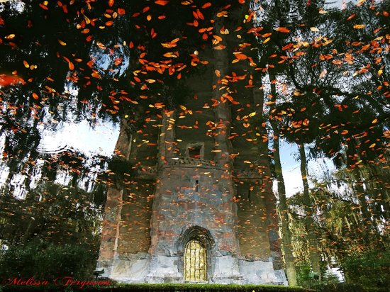 Bok Tower Gardens: Reflection of Bok Tower in the mote