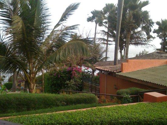 Ngala Lodge: A Windy Day
