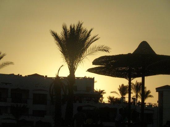 Otium Hotel Amphoras: Panorama