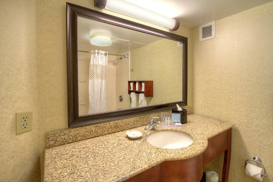 Hampton Inn Raleigh/Cary : Guest Bathroom